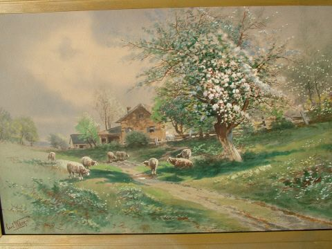 10 Sheep in Spring