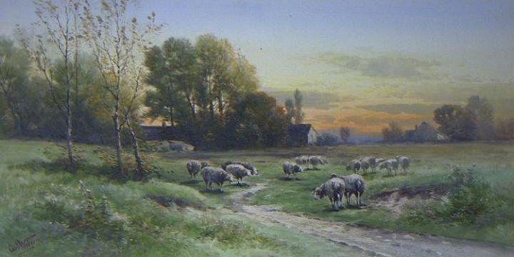 15 Pastoral Ewes