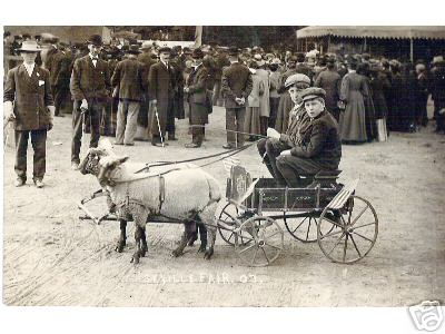 2 Boys in a Two Sheep Cart Ohio 1907