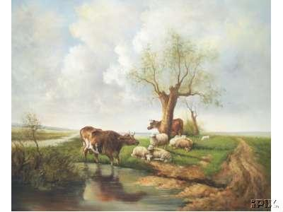 2 Cows and 7 Sheep at Water
