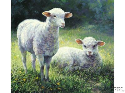 2 Crosstich Lambs