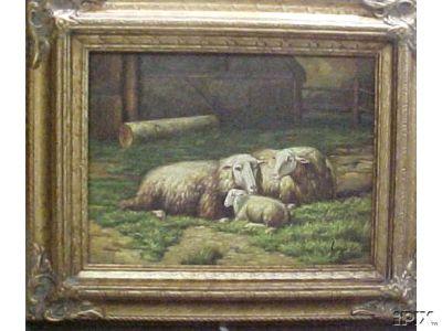 2 Ewes and 1 Lamb2