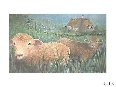 2 Watercolor Sheep
