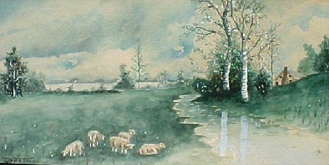 5 Sheep By Birches