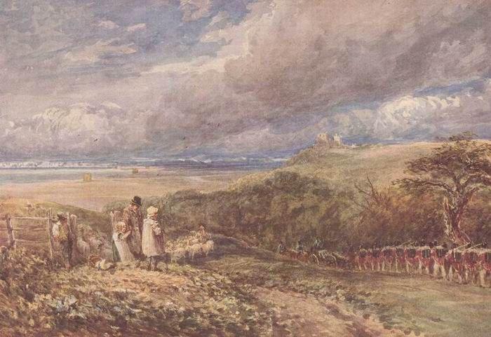 English Farm Sheep