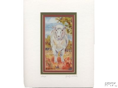 Ewe Watercolor Print