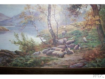 Flock Resting By Lake