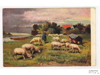 Flock with Shepherd