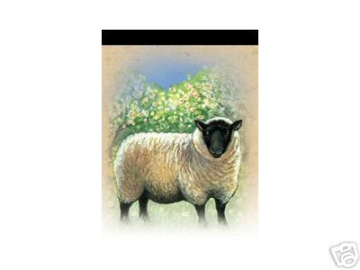 Magnetic Notepad Sheep
