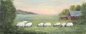 Ocean Sheep Farm