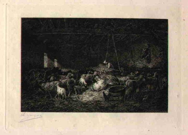 Print of Sheep in the Barn