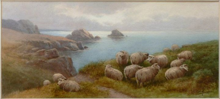 Rowdon Sheep 3