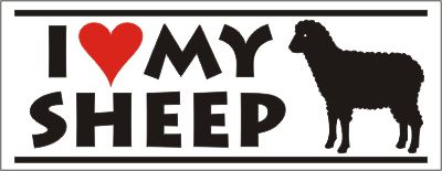 Sheep Bumper Sticker