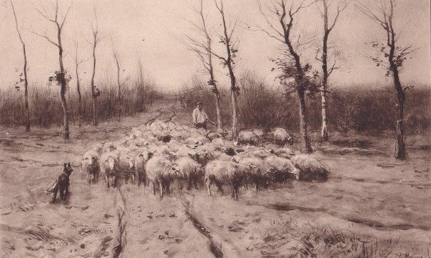Sheep Flock with Dog and Shepherd