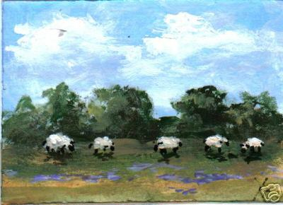 Sheep in Lupines
