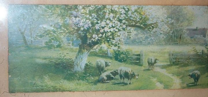 Sheep in the Green Spring Time