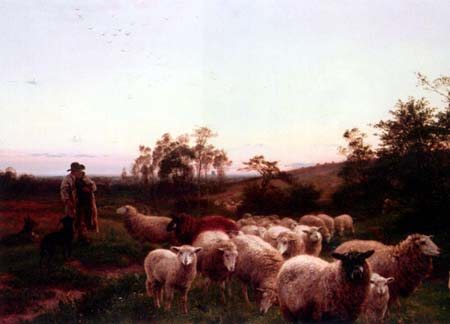 Sheep Leaving Pasture