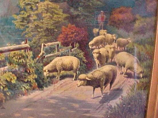 Sheep on a Pleasant Day