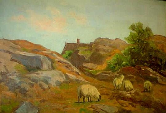 Sheep on Rocky Coast