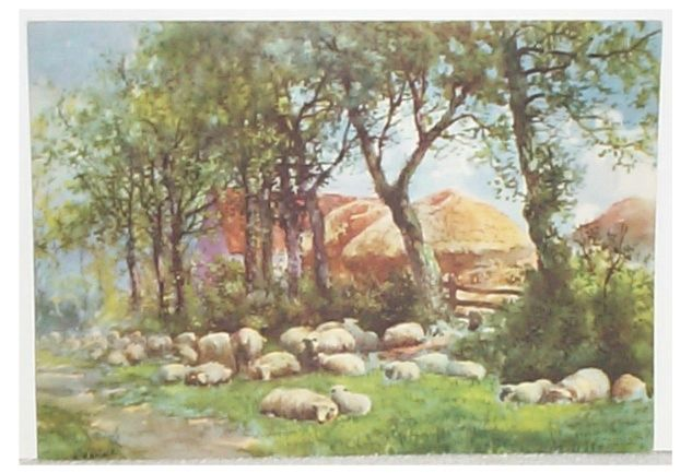 Sheep Resting Under Trees