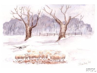Winter Sheep Pen