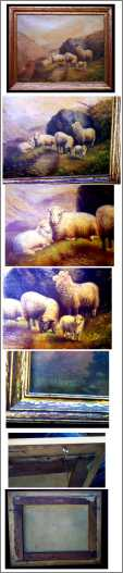 Stepson Sheep